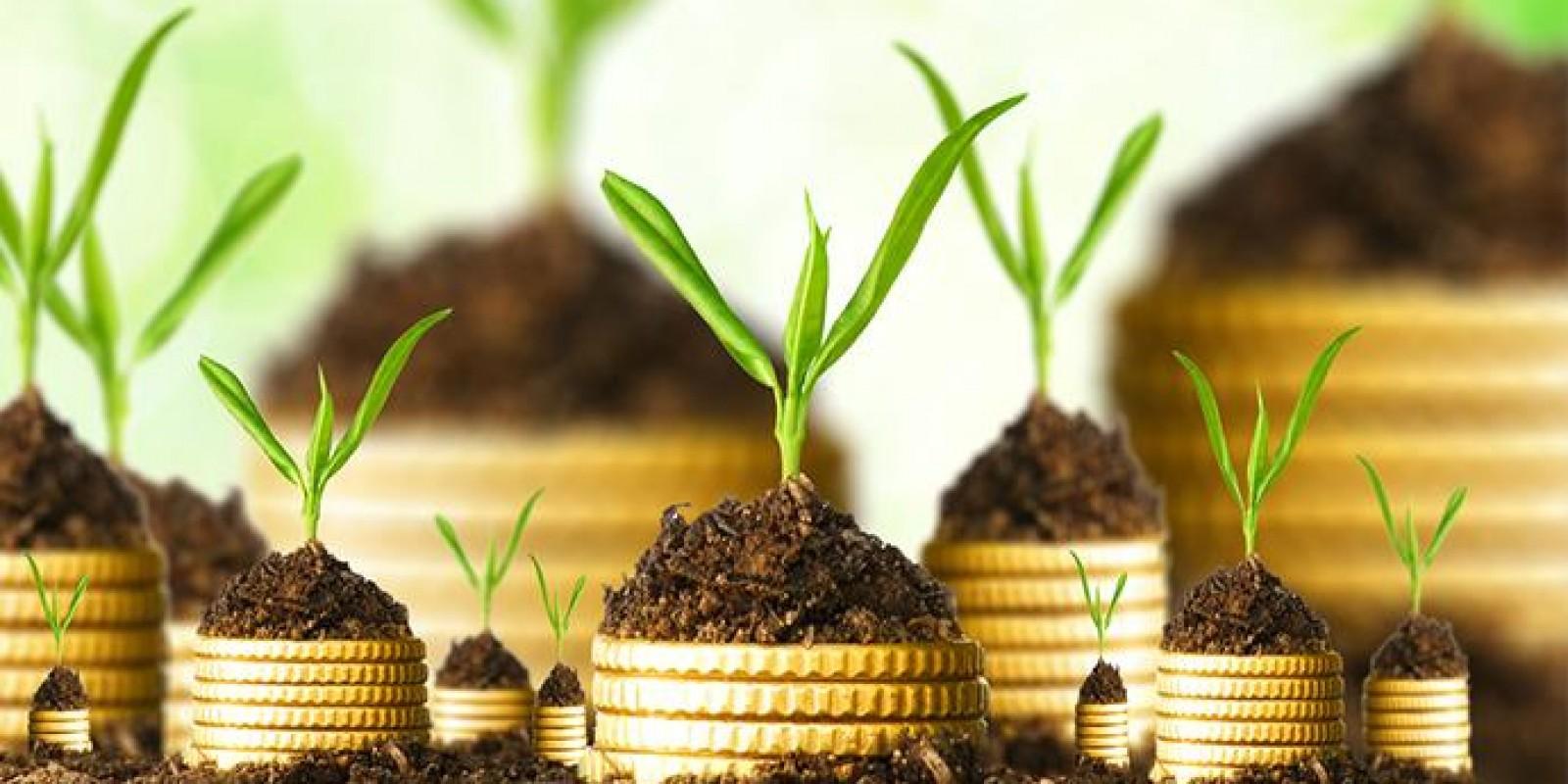 5 dicas para investir bem o seu dinheiro